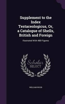 Supplement to the Index Testaceologicus, Or, a Catalogue of Shells, British and Foreign Illustrated with 480 Figures by Fellow and Tutor in Theology William (Fellow and Tutor in Theology Oriel College Oxford Oriel College, Oxford Oriel Colle Wood