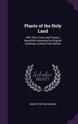 Plants of the Holy Land With Their Fruits and Flowers, Beautifully Illustrated by Original Drawings, Colored from Nature by Henry Stafford Osborn