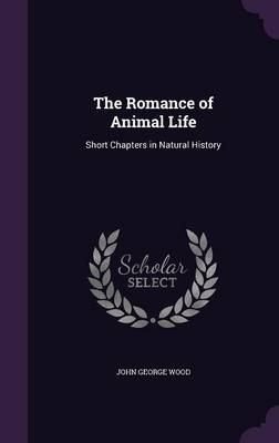 The Romance of Animal Life Short Chapters in Natural History by John George Wood