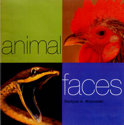 Animal Faces by Darlyne A. Murawski