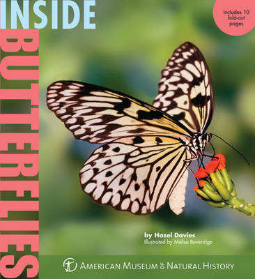 Inside Butterflies by Hazel Davies