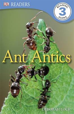 Ant Antics by Deborah Lock