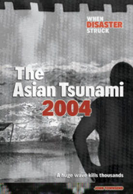 The Asian Tsunami, 2004 by John Townsend