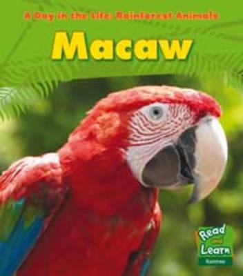 Rainforest Animals: Macaw by Anita Ganeri
