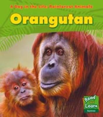 Rainforest Animals: Orangutan by Anita Ganeri