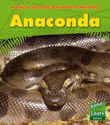 Rainforest Animals Pack A by Anita Ganeri, Terry Riley