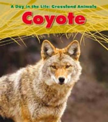 Coyote by Louise Spilsbury