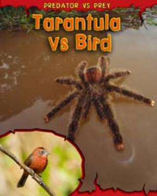 Tarantula Vs Bird by Mary Meinking