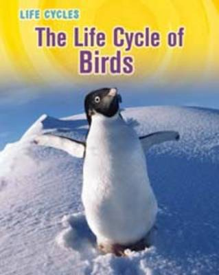 The Life Cycle of Birds by Susan Heinrichs Gray