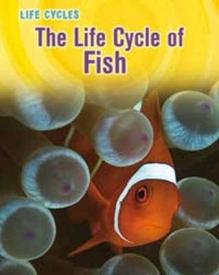The Life Cycle of Fish by Darlene Ruth Stille, Sheree Boyd