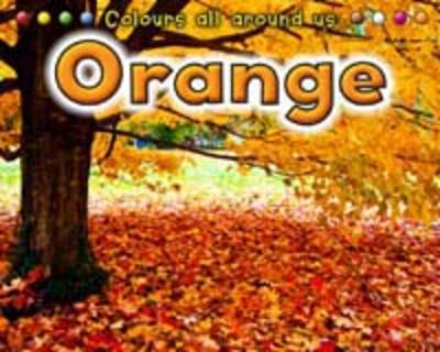 Orange by Rebecca Rissman