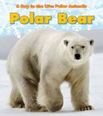 Polar Bear by Katie Marsico