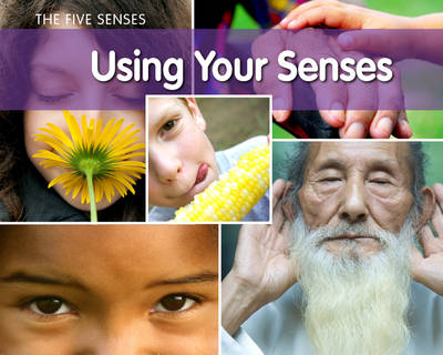 Using Your Senses? by Rebecca Rissman