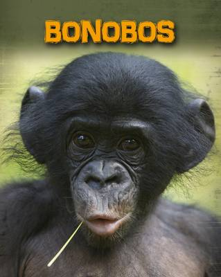 Bonobos by Buffy Silverman