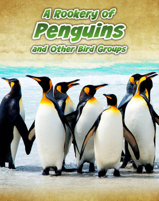Rookery of Penguins And Other Bird Groups by Jilly Hunt