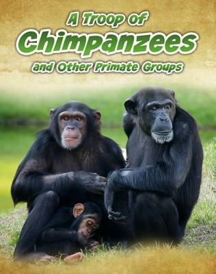 A Troop of Chimpanzees And Other Primate Groups by Richard Spilsbury