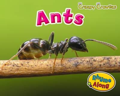 Ants by Rebecca Rissman