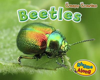 Beetles by Rebecca Rissman