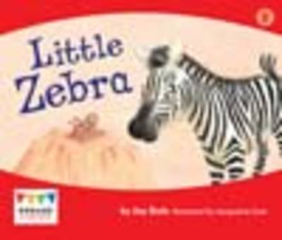 Little Zebra (6 Pack) by Jay Dale