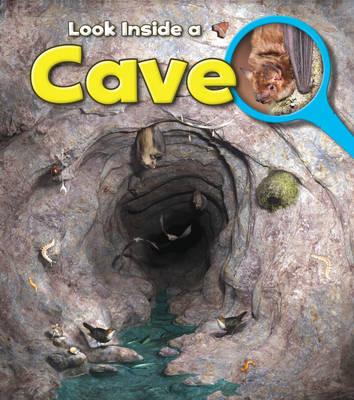 Cave by Richard Spilsbury