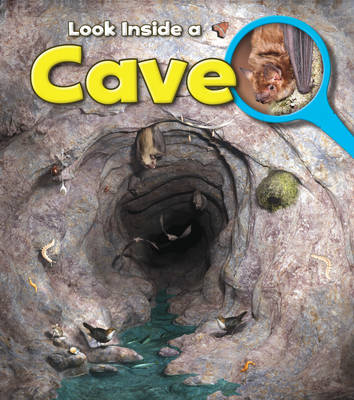 A Cave by Richard Spilsbury