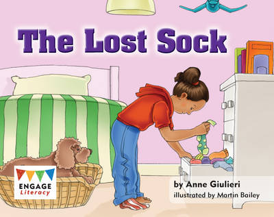 The Lost Sock by Anne Giulieri