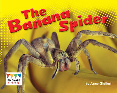 The Banana Spider (6 Pack) by Anne Giulieri