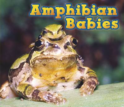 Amphibian Babies by Catherine Veitch