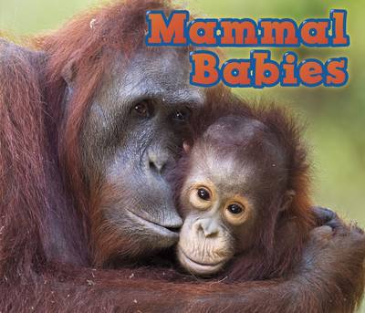 Mammal Babies by Catherine Veitch