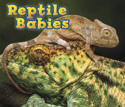 Reptile Babies by Catherine Veitch