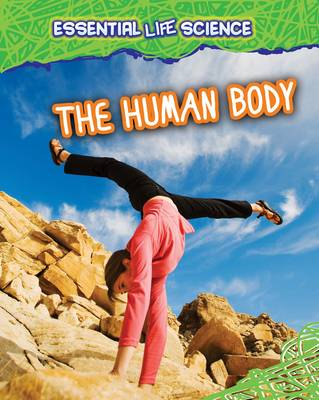 The Human Body by Melanie Waldron