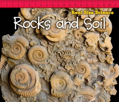 Rocks and Soil by Rebecca Rissman