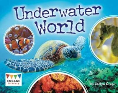 Underwater World Pack of 6 by Jaclyn Crupi