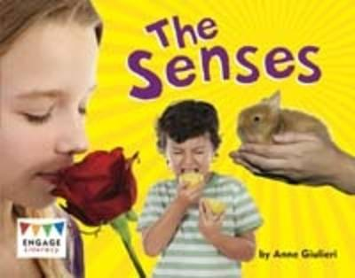 The Senses by Anne Giulieri