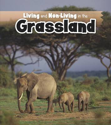Living and Non-Living in the Grasslands by Rebecca Rissman