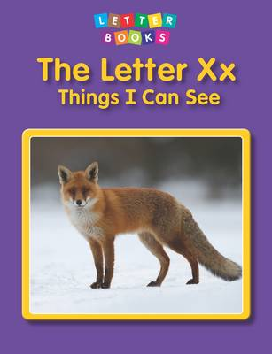 The Letter Xx: Things I Can See by Hollie J. Endres