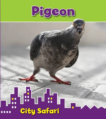 Pigeon City Safari by Isabel Thomas