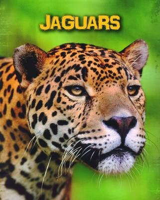 Jaguars by Charlotte Guillain