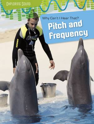 Why Can't I Hear That? Pitch and Frequency by Louise Spilsbury, Richard Spilsbury