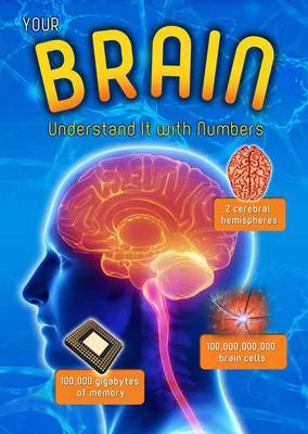 Your Brain Understand it with Numbers by Melanie Waldron