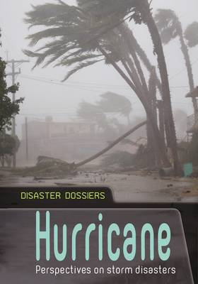 Hurricane Perspectives on Storm Disasters by Andrew Langley