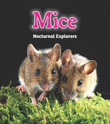 Mice Nocturnal Explorers by Rebecca Rissman