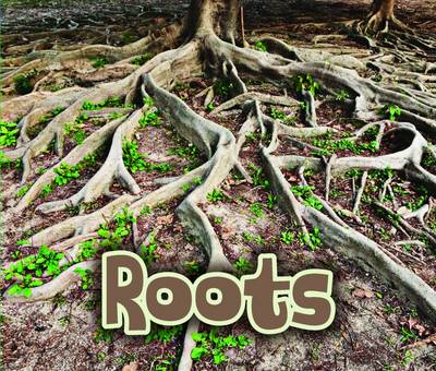 All About Roots by Claire Throp