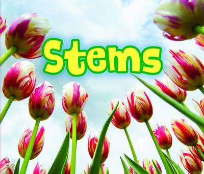 All About Stems by Claire Throp