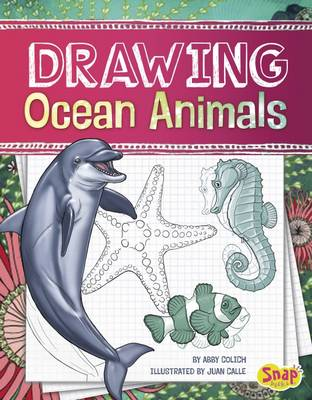 Drawing Ocean Animals by Abby Colich