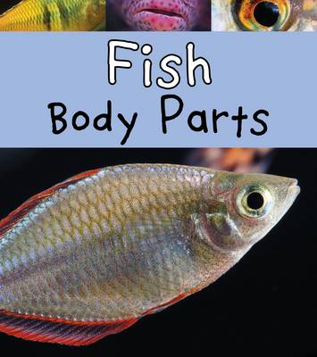 Fish Body Parts by Clare Lewis