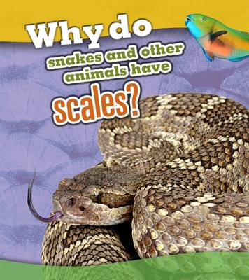 Why Do Snakes and Other Animals Have Scales? by Clare Lewis