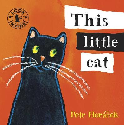 This Little Cat by Petr Horacek