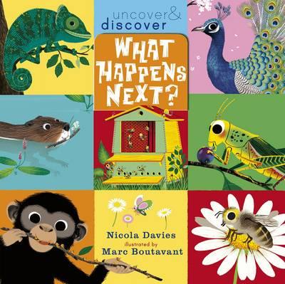 What Happens Next? by Nicola Davies