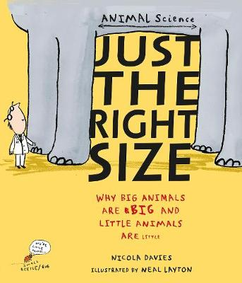 Just the Right Size Why Big Animals are Big and Little Animals are Little by Nicola Davies